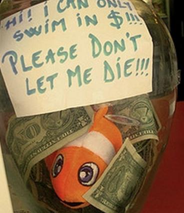 """""""Hola... ¡solo puedo nadar en billetes... por favor no dejes que muera!"""""""